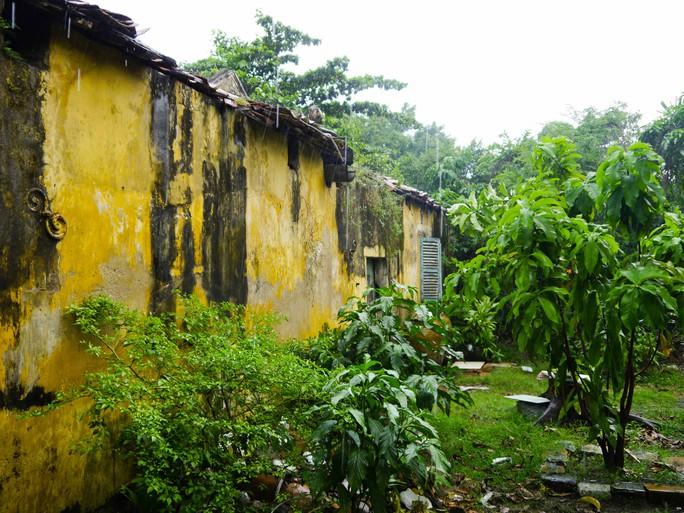 Sau thời gian dài không được sử dụng, nhiều dãy nhà trong chùa Giác Viên bị cỏ cây vây kín. Cảnh này khiến ai ghé thăm cũng phải chạnh lòng trước một công trình được xem là di tích lịch sử cấp quốc gia.