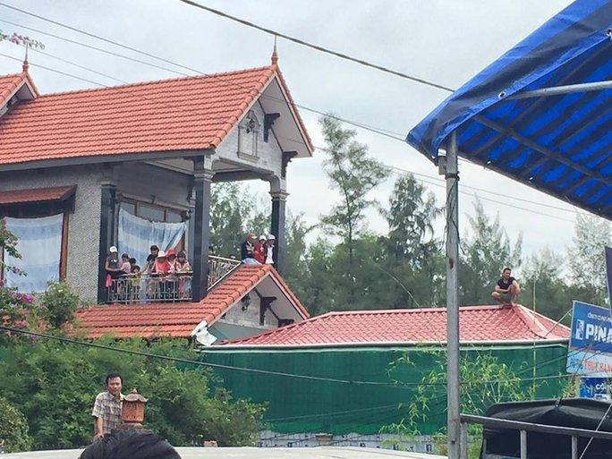 Và leo lên cả mái nhà