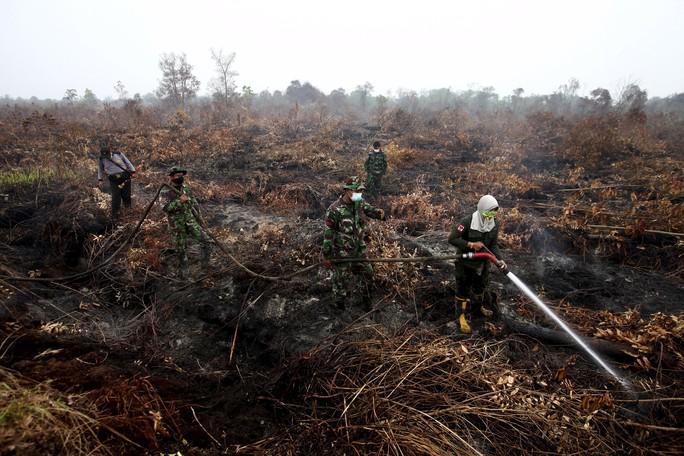 Nhân viên cứu hỏa, binh sĩ dập lửa tại tỉnh Riau hôm 9-9 Ảnh: REUTERS