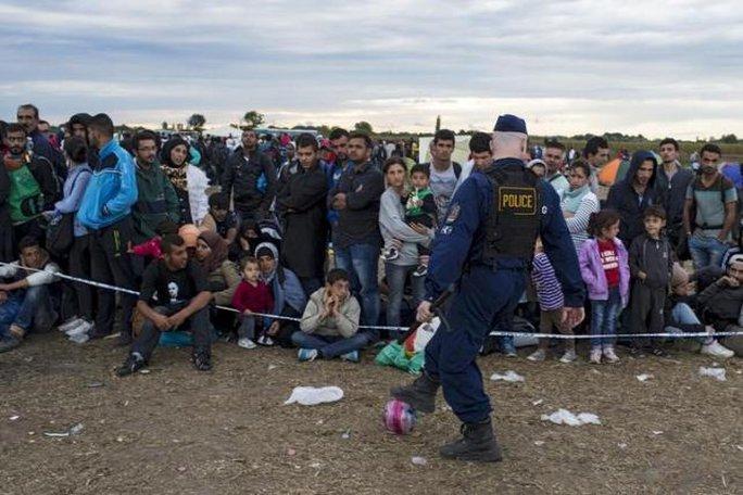 Người di cư chờ đợi ở ngôi làng Roszke - Hungary hôm 6-9. Ảnh: Reuters