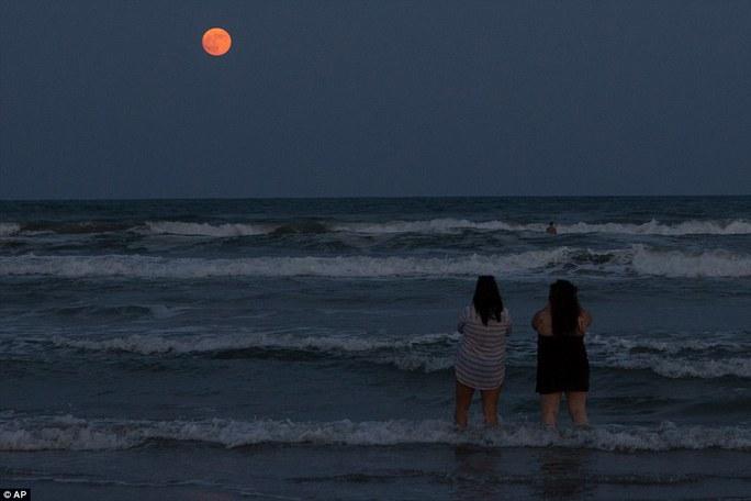 """Ngắm nhìn """"siêu trăng"""" mọc trên bãi biển ở Corpus Christi, Texas, Mỹ. Ảnh: AP"""
