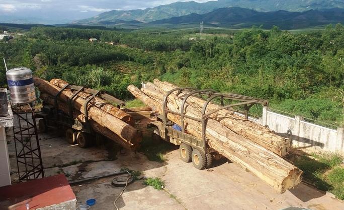 Hai chiếc xe gỗ tang vật tại Hạt kiểm lâm huyện Ngọc Hồi