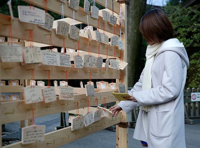 Hàng triệu người thăm Đến Meiji ở Tokyo trong 3 ngày đầu năm mới để cầu an khang, thịnh vượng. Ảnh: EPA