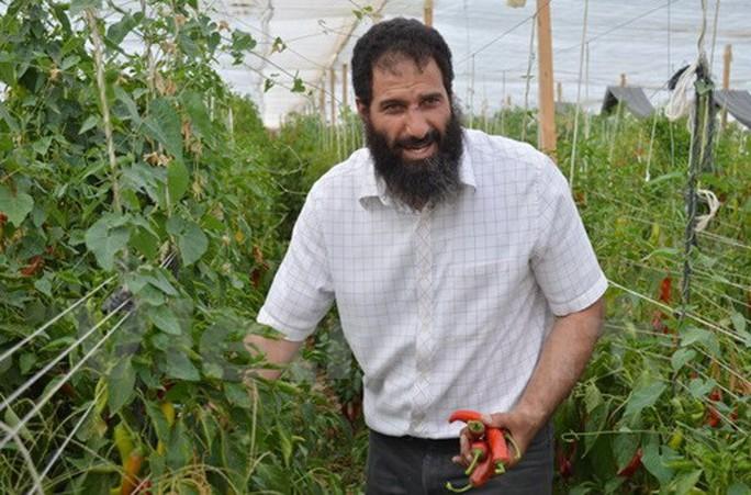 Anh Fahim trong khu trồng ớt ngọt. Ảnh: Hữu Chiến/Vietnam+