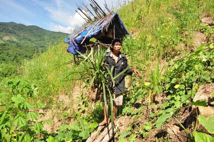 Sau 2 năm trở về từ rừng sâu, anh Hồ Văn Lang vẫn nhanh nhẹn, thoăn thoắt như một con sóc