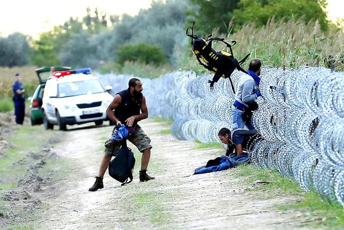 Cảnh sát Hungary bất lực đứng nhìn người tị nạn Syria vượt hàng rào ngăn chặn người tị nạn từ Serbia qua Hungary Ảnh: REUTERS