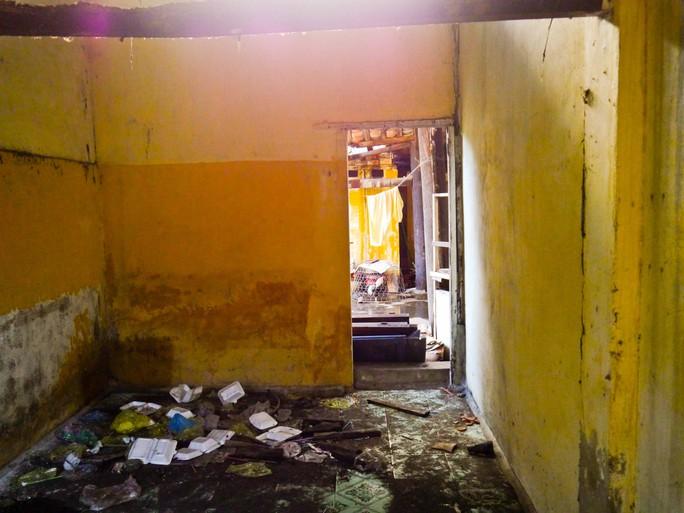 Nhiều công trình bị bỏ hoang trở thành nơi cư ngụ lý tưởng của các loại côn trùng, chuột bọ