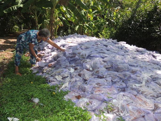 Bao nhựa đựng gia vị nêm quá đát do kẻ lạ lén đổ bỏ trong khuôn viên đất của Tòa thánh Châu Minh