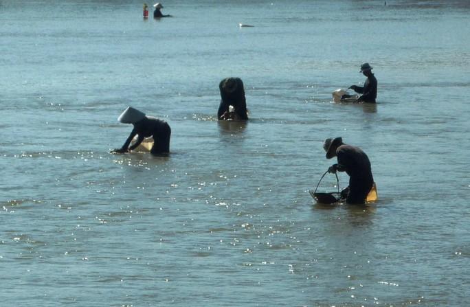 Nhiều phụ nữ thường xuyên bắt ốc, sò ở vịnh Cam Ranh