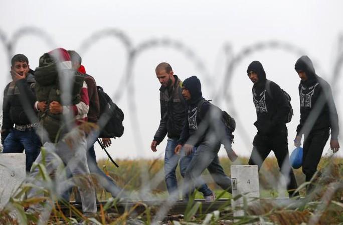 Người di cư gần điểm tập trung ở làng Roszke - Hungary hôm 11-9. Ảnh: Reuters