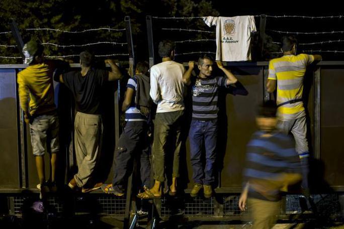 Người di cư bất lực trước hàng rào thép gai ở biên giới Hungary. ẢNh: Reuters
