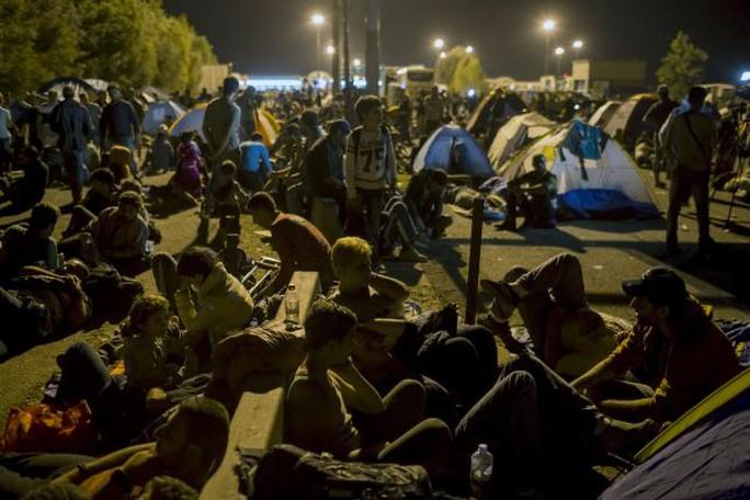 Cả ngàn người đang mắc kẹt ở biên giới Hungary - Serbia. ẢNh: Reuters