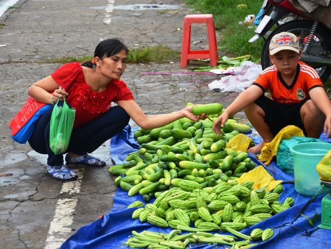 Lựa chọn hàng ngày trong bữa ăn của công nhân chủ yếu là rau củ   ẢNH: NGUYỄN LUÂN