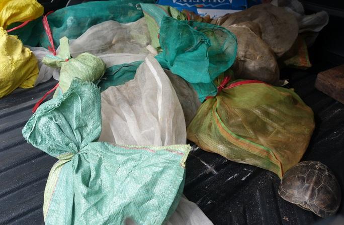 Số tang vật thu giữ tại nhà của người thu mua thịt thú rừng