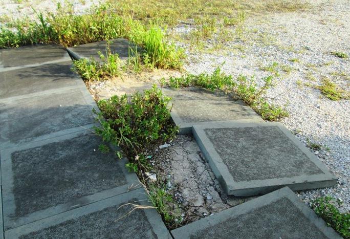 Nền đá bong tróc, cỏ mọc đầy