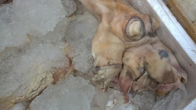 Nếu không bị phát hiện, nhiều khả năng số lượng thịt này sẽ được chuyển đến các nhà hàng cho thực khách Ảnh: CSGT cung cấp