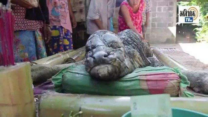 Con vật chết ngay khi vừa ra đời. Ảnh: NAIJ.COM