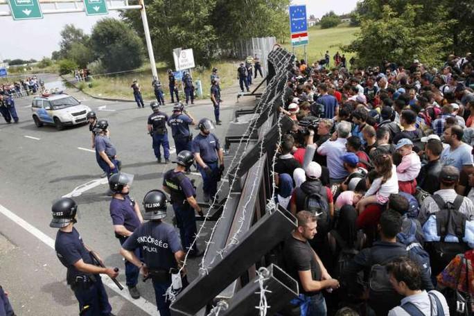 Dòng người di cư bị tắc lại ở biên giới Hungary. Ảnh: Reuters