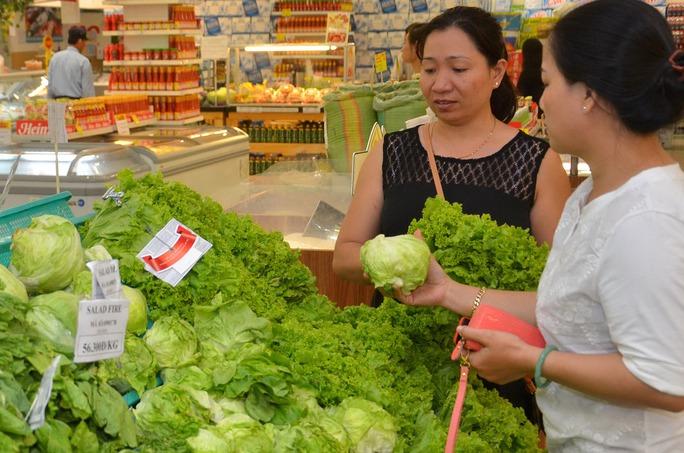 """Rau cải xanh được phong là """"siêu thực phẩm"""" Ảnh: Tấn Thạnh"""