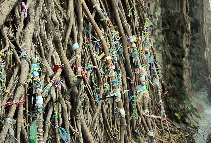 Những gốc cây trong chùa cũng khốn khổ khi du khách cột rác vào vì quan niệm gửi lại những xui xẻo.