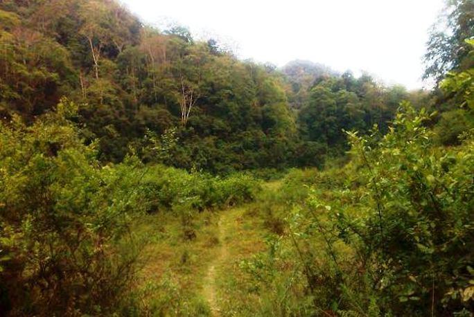 Được vào bản Kịt phải đi bộ nhiều km đường rừng nên công tác cứu hộ gặp nhiều khó khăn