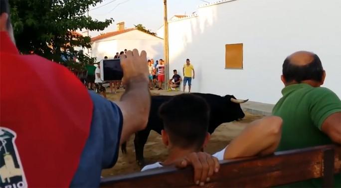 Khán giả tham dự lễ hội bò tót ở Cáceres. Ảnh: YOUTUBE
