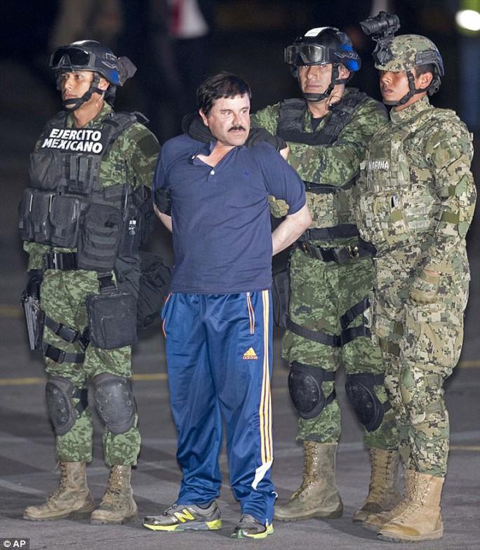 Guzman bị giới chức Mexico bắt lại. Ảnh: AP