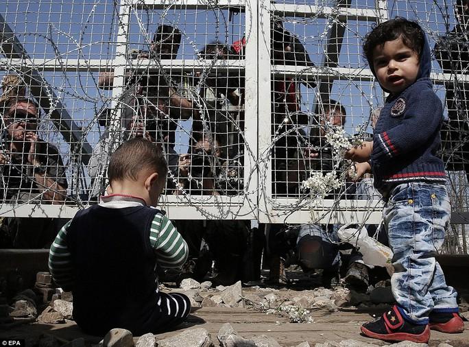 Trại tị nạn ở Idomeni ban đầu chỉ thiết kế cho 1.200 người, nhưng nay số lượng người tới đây đã lên tới 8 ngàn người. Ảnh: EPA
