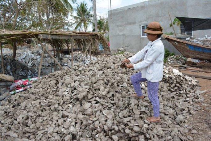 Một nông dân bên đống hàu bị chết được vớt lên chất đống bến bờ - Ảnh: Mậu Trường