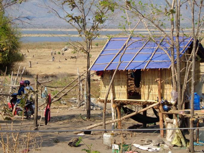 Để vượt qua cơn đại hạn, người dân ở huyện Bác Ái, tỉnh Ninh Thuận phải cất chòi tạm ở khu vực lòng hồ Sông Sắt để kiếm sống