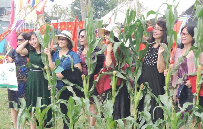Các du khách hào hứng trong ngày hội bắp nếp
