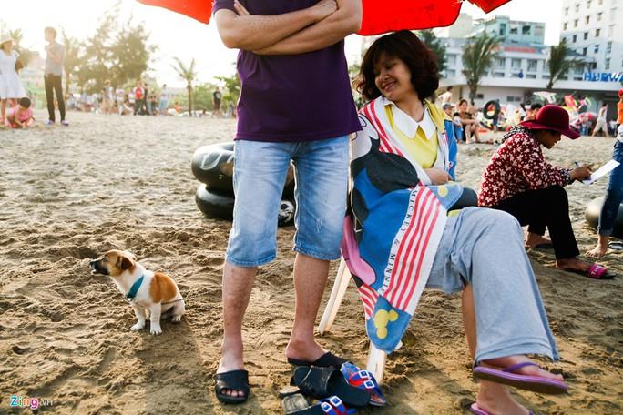 Chị Hường (Hà Nội) cho biết mang theo cả chú cún cưng từ thủ đô đến đây vì gia đình đi chơi không có người trông.