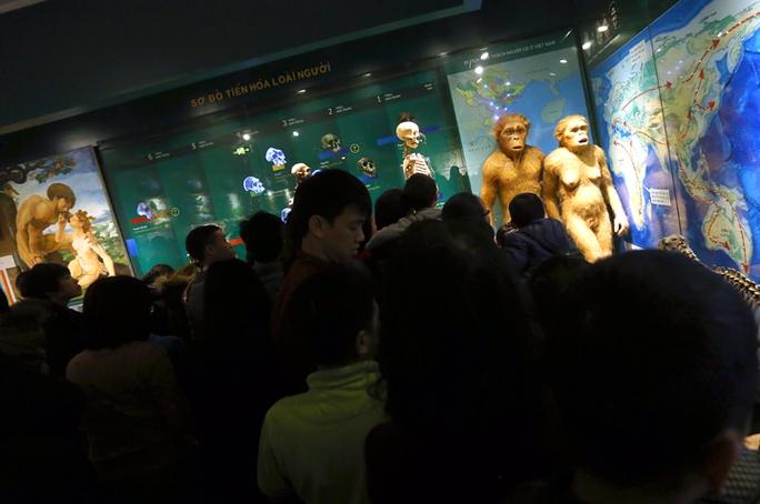 Đám đông chen nhau đứng xem và chụp ảnh mẫu vật và sơ đồ tiến hóa loài người