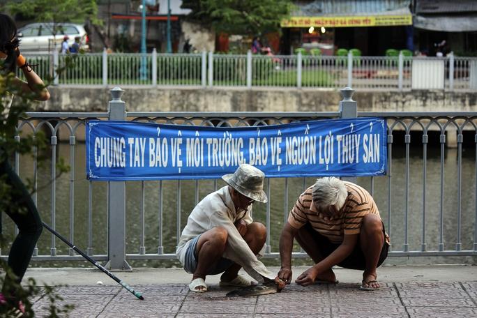 Mặc dù chính quyền địa phương đã có nhiều băng rôn tuyên truyền nhưng không mạnh tay xử phạt quyết liệt nên người dân vẫn thản nhiên câu cá.