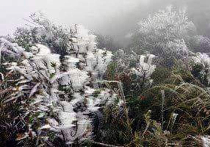 Băng tuyết trắng xóa trên đường lên Cao Sơn - Ảnh: A.Thắng