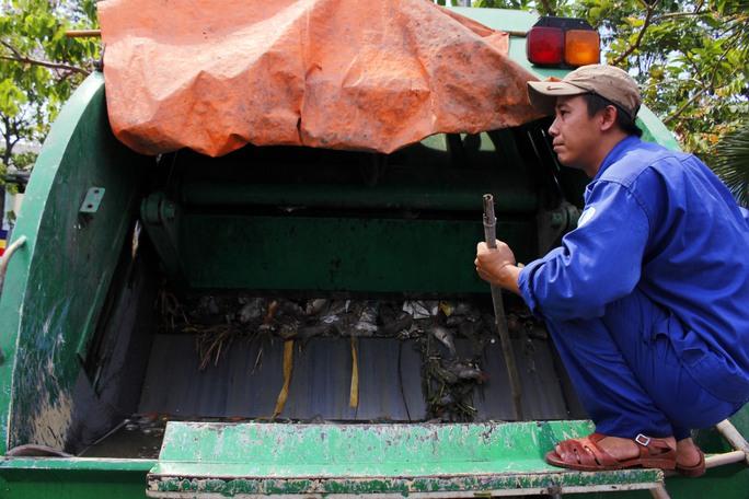 Tình tới chiều 18-5, tổng số cá chết được vớt lên là hơn 70 tấn cá và số lượng này chưa dừng tại đó. Toàn bộ số cá chết sẽ được đưa lên xe chuyên dụng chở về bãi rác Đa Phước, huyện Bình Chánh để xử lý theo đúng quy định.