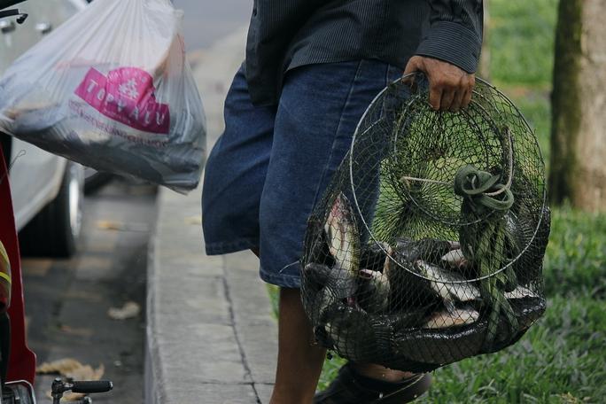 Những người câu cá ở kênh Nhiêu Lộc Thị Nghè đa số để bán. Họ cho biết cá này được bán cho các chợ: Thị Nghè, Bà Chiểu với giá cá trê: 20.000 đồng/kg , cá chép: 30.000 đồng/kg.