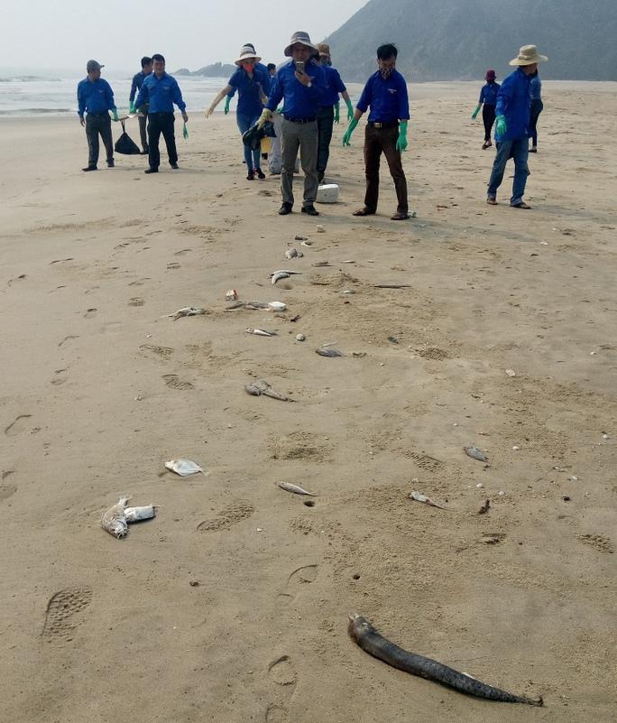 Lực lượng đoàn viên thanh niên Viettel Quảng Bình ra quân thu gom cá sáng 27-4