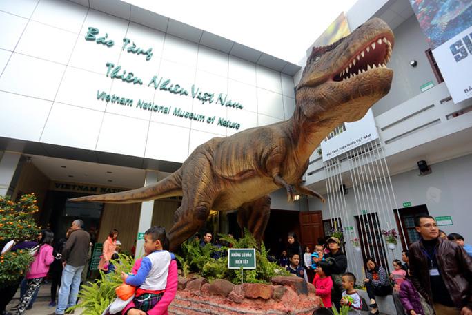 Trong khuôn viên khoảng 300 mét vuông trưng bày 1.400 mẫu vậtđộc đáo tái hiện sự hình thành của sự sống qua 3,6 tỉ năm.