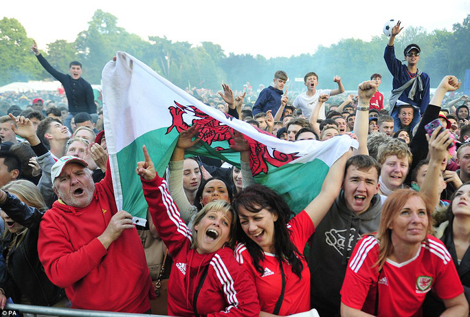 Niềm vui của các CĐV Wales ở quê nhà