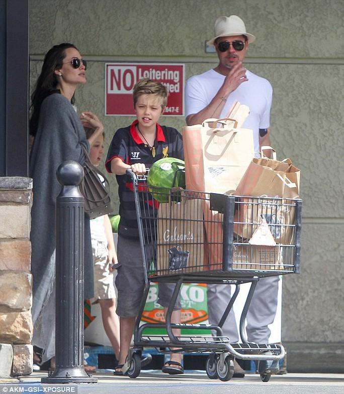 Angelina Jolie, Brad Pitt và 3 con