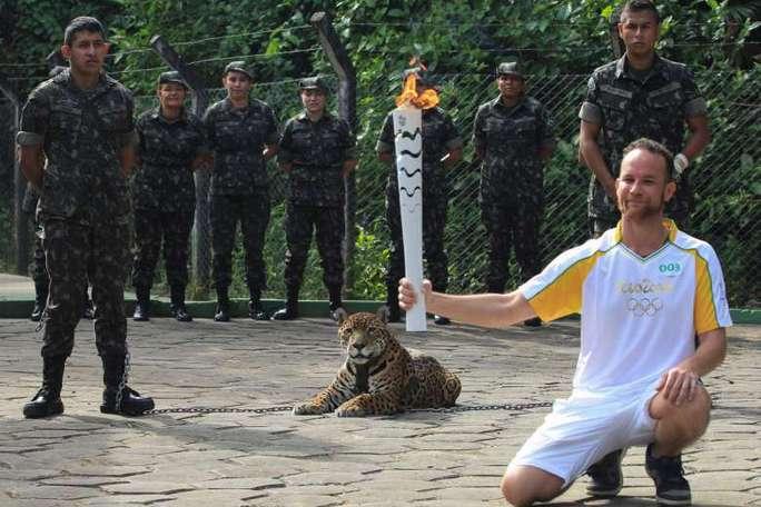 Báo đốm trước khi bị giết chết tại lễ rước đuốc Olympic ở Amazon