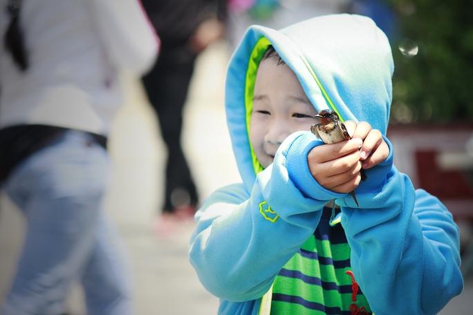 Những chú chim nhỏ với mức giá 10.000 - 20.000 đồng cũng được bày bán tại chùa để khách thập phương phóng sanh. Trong ảnh: Một cậu bé chuẩn bị phóng sanh chú chim được bố mẹ mua lại.