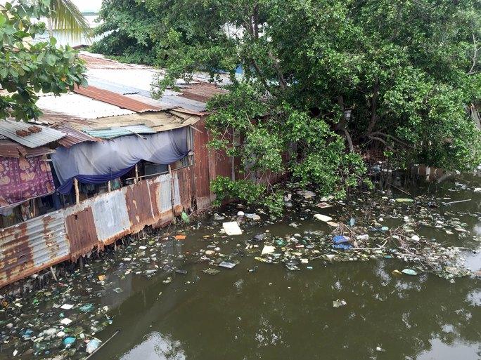 Ô nhiễm môi trường, nước tù đọng trên ao Sông Tân (phường Tân Kiểng, quận 7, TP HCM) khiến muỗi phát triển làm người dân nơi đây  khổ sở  Ảnh: LÊ PHONG