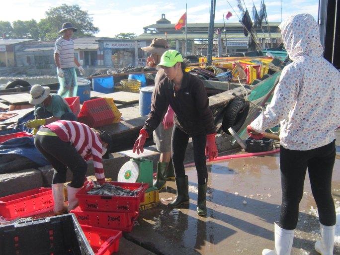 Cảnh tấp nập tại cảng cá Thuận An ngày 30-6 Ảnh: QUANG NHẬT