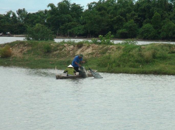 Người nuôi trồng thủy hải sản ở thôn Cồn Nâm (xã Quảng Minh) điêu đứng sau vụ cá chết