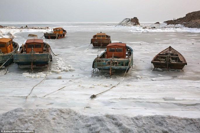 Thuyền đánh cá mắc kẹt ở TP Tần Hoàng Đảo. Ảnh: Tân Hoa Xã