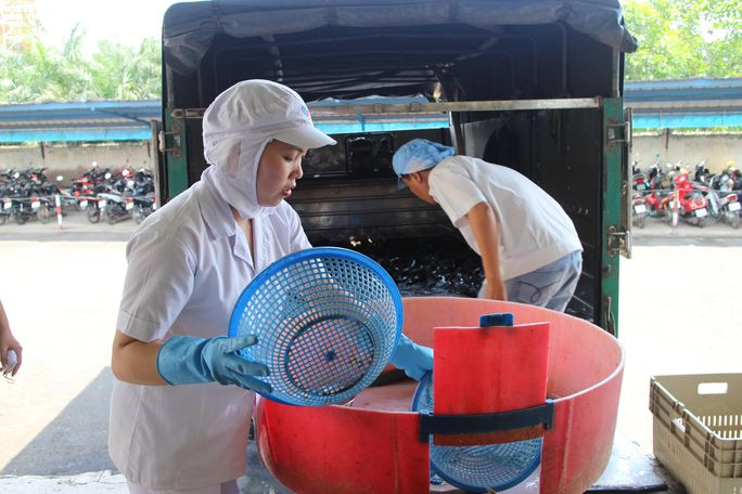 Ham học hỏi và sống hết mình với công việc là ưu điểm ở nữ công nhân Trần Thị Diệu, Công ty CP Kinh doanh Thủy hải sản Sài Gòn