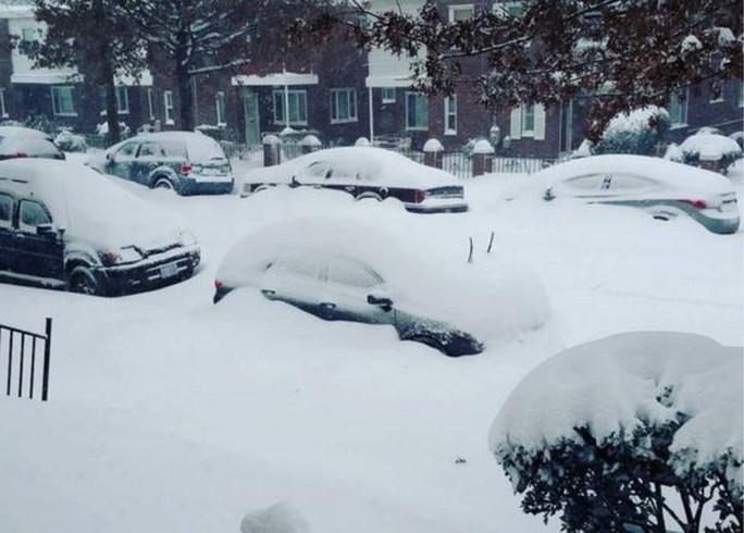 Xe ngập trong tuyết. Ảnh: gaholder81