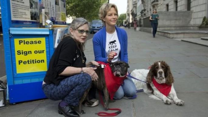 Người dân ở London - Anh cũng phản đối lễ hội thịt chó Ngọc Lâm. Ảnh: AP